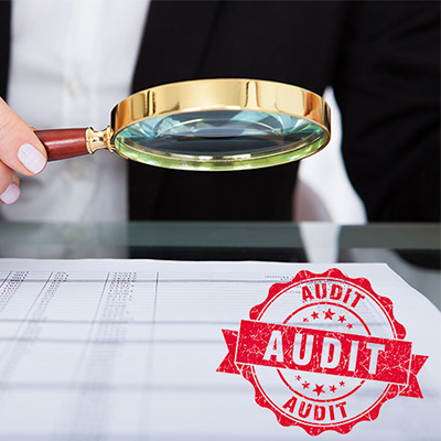 Statutory Audits as per the Companies Act, 2013