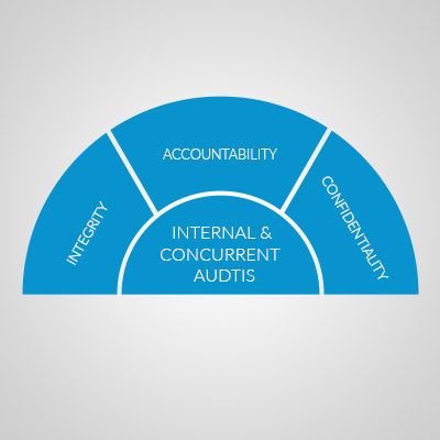 Internal and Concurrent Audits